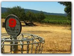 Click for more information on Frisbee Golf Course.