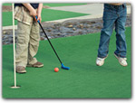 Click for more information on Emerald Dolphin Inn & Mini Golf.