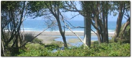 Click for more information on Howard Creek Ranch.