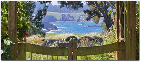 Click for more information on Mendocino Cafe.