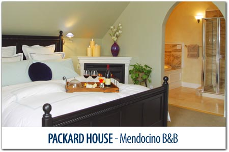 Packard House - Mendocino Bed & Breakfast