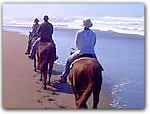 Click for more information on Ross Ranch Horse Riding - South of Mendocino.