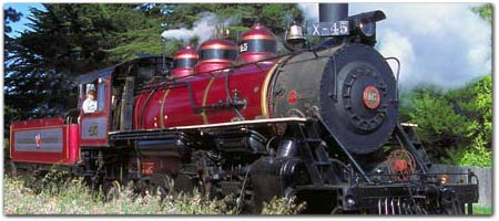 SKUNK TRAIN ~ Travel through History